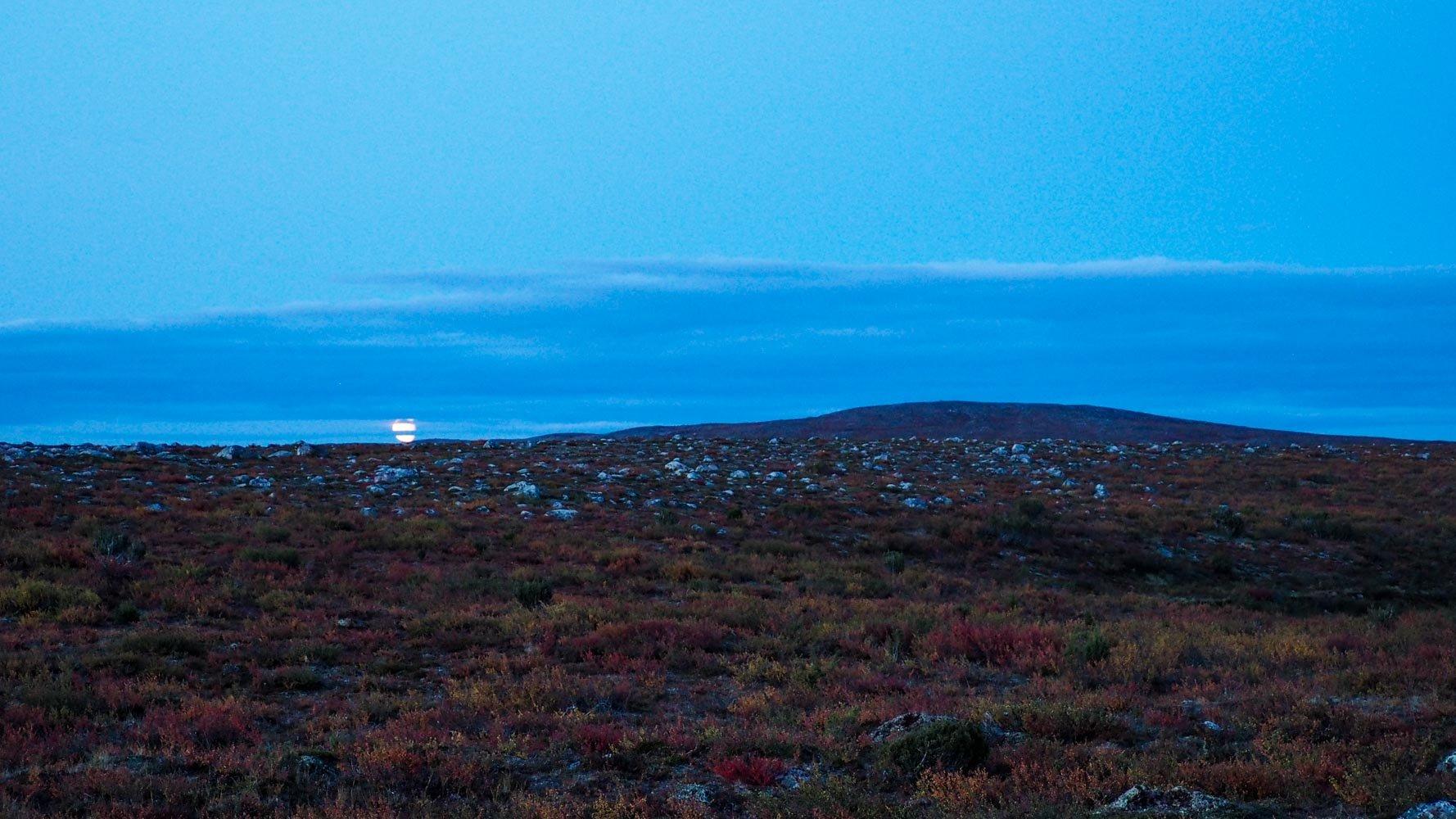 Iltayö, puuttoman nummen takaa on nousemassa kuu, jonka pilvet leikkaavat kahtia.
