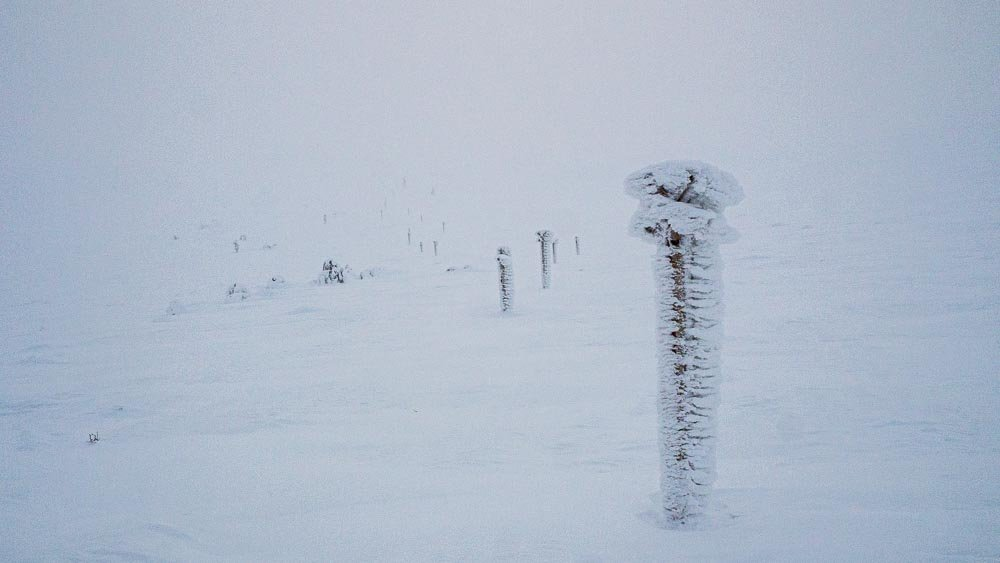 Lumituisku tunturissa, etualalla tykkylumen peittämä reittiviitta.