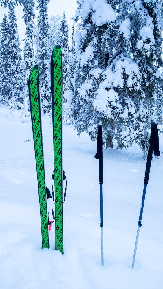 Hangessa pystyssä suksipari, joiden pohjaan on kiinnitetty kirkkaan vihreät nousukarvat.