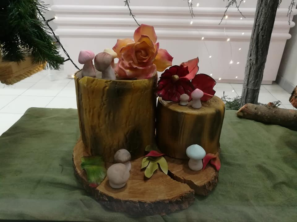 τούρτα από ζαχαρόπαστα μανιταρια, mushrooms themed cake, Ζαχαροπλαστεία στη Καλαμάτα madame charlotte, τούρτες γεννεθλίων γάμου βάπτησης παιδικές θεματικές birthday theme party cake 2d 3d confectionery patisserie kalamata