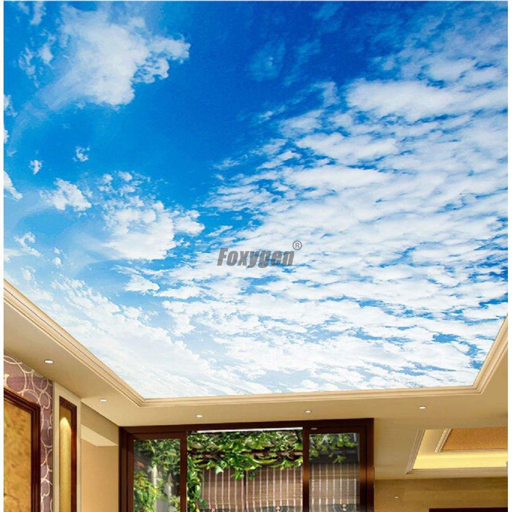 House Modern False Ceiling Blue Sky Clouds Sunshine Print 3D Transparent PVC Ceiling Design