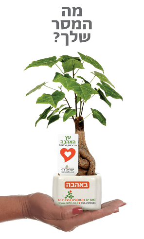 מתנות לכנסים, מבחר מוצרי פרסום מסרים ממותגים בעציצים