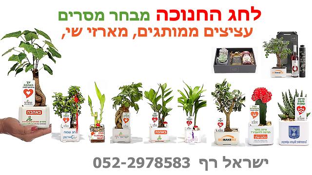 מתנות לחנוכה, מתנות לעובדים, מתנות ללקוחות, עציצים ממותגים, מארזי שי,
