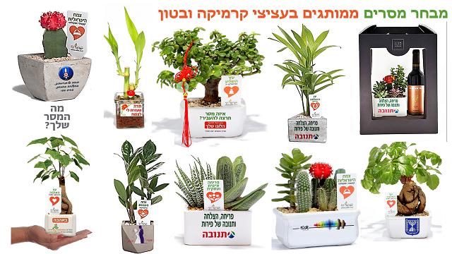 מתנות לסיום שנת הלימודים, עציצים ממותגים, מתנות למורים והתלמידים