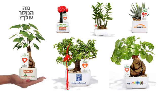 עציצים ממותגים מתנות לטו בשבט, לעובדים והלקוחות  מסרים ממותגים בעציצים