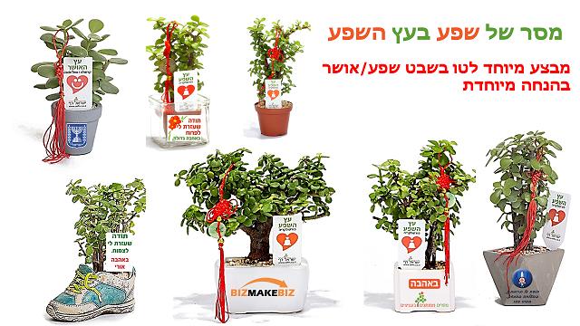 עציצים ממותגים מתנות לטו בשבט לצמיחה ופריחה של העסק שלכם