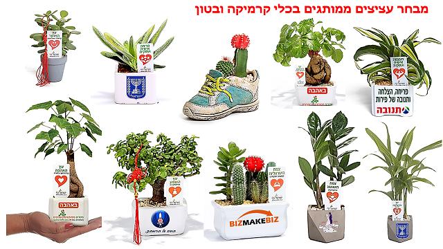 מתנות לטו בשבט, תנו עציצים ממותגים ותקבלו צמיחה ופריחה עסקית