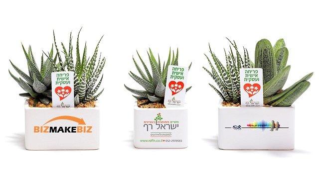 מתנות לראש השנה, מארזי שי, עציץ ממותג לפריחה אישית ועסקית בעסק שלך