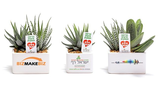 מתנות לראש השנה, מארזי שי, עציץ ממותג לפריחה אישית ועסקית לפריחה כלכלית בעסק שלך