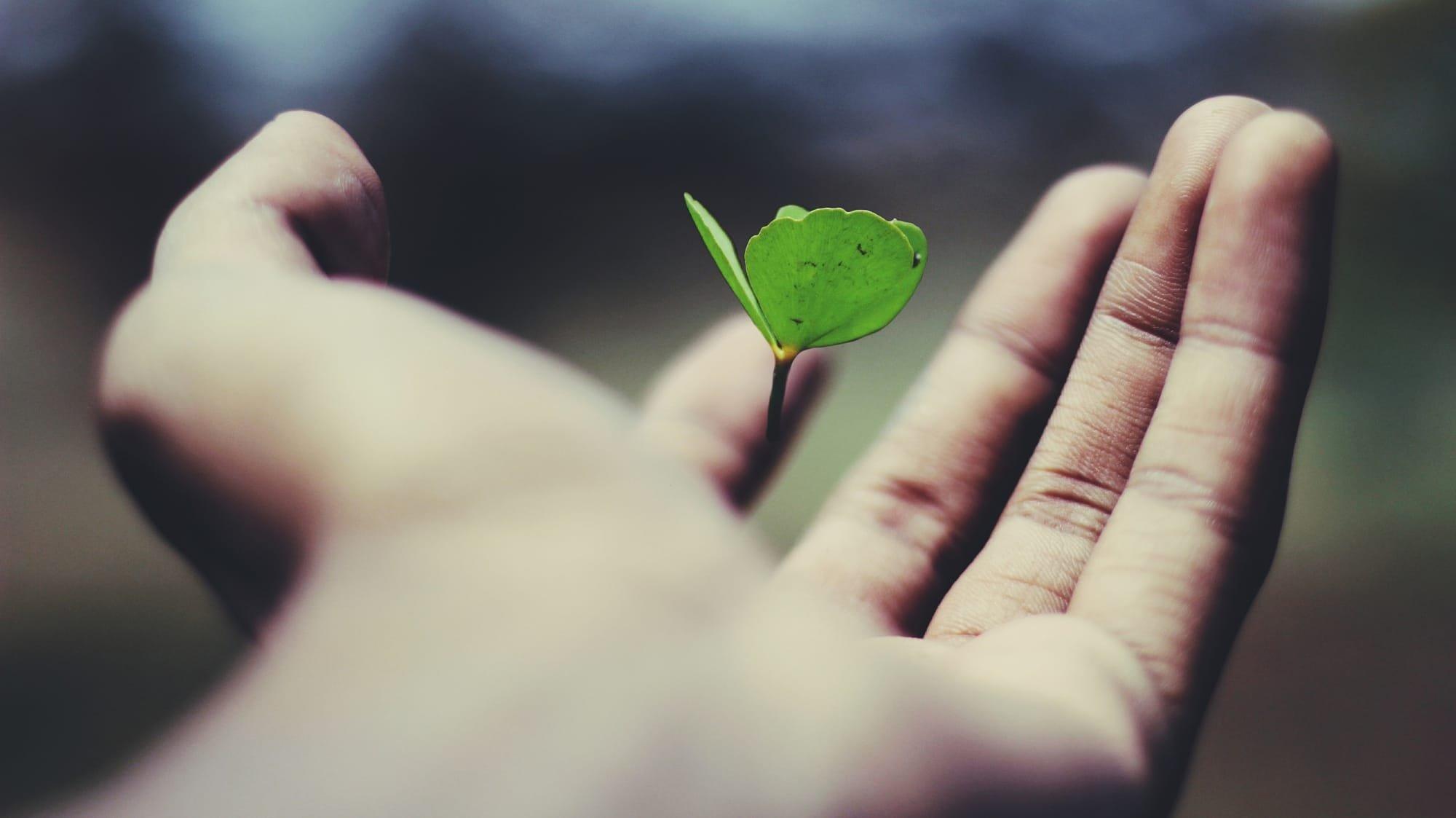 תקווה, הורות למתבגרים, יחסים במשפחה, העצמת ילדים , הצלחה , אושר