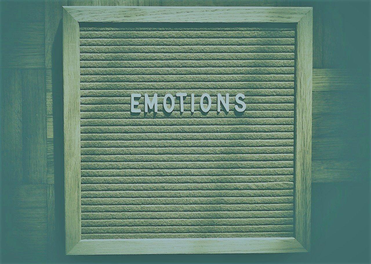 émotions sensea coaching