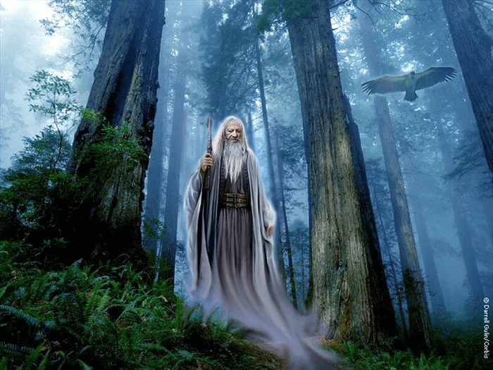 13897756_druid Путь Волхва
