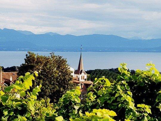 Le village viticole de Féchy (Vaud)