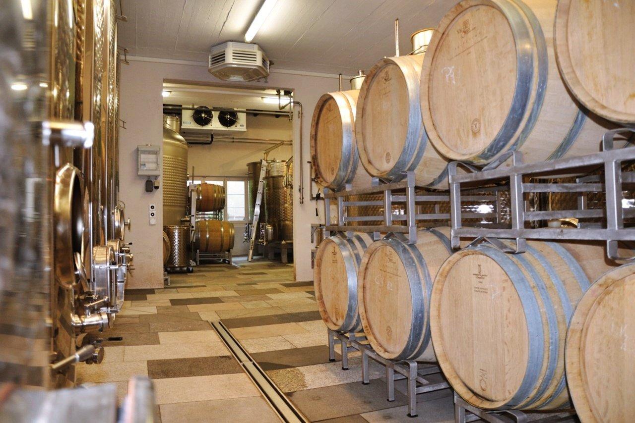 Le domaine de Baumann Weingut à Oberhallau dans le vignoble de Schaffhouse