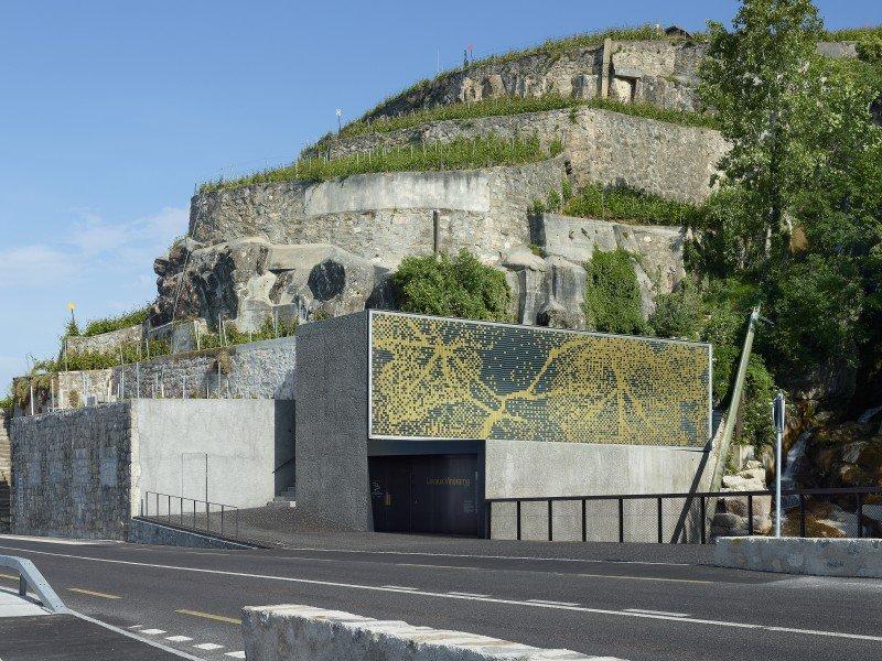 Lavaux Vinorama
