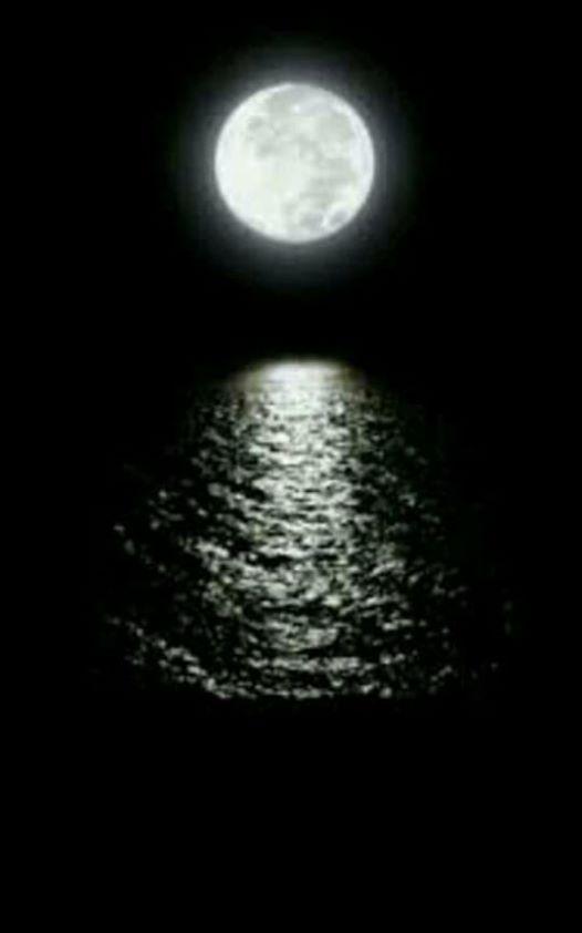 ربما تحتوي الصورة على: ليل وسماء