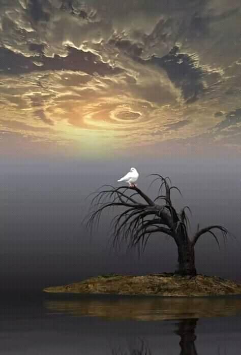 ربما تحتوي الصورة على: سماء، وسحاب، ومحيط، ونشاطات في أماكن مفتوحة، وطبيعة وماء
