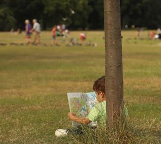 ربما تحتوي الصورة على: شخص أو أكثر، وأشخاص يجلسون، وعشب، ونشاطات في أماكن مفتوحة وطبيعة