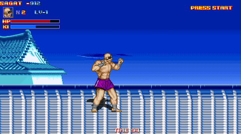 Sagat of a victorious campaign