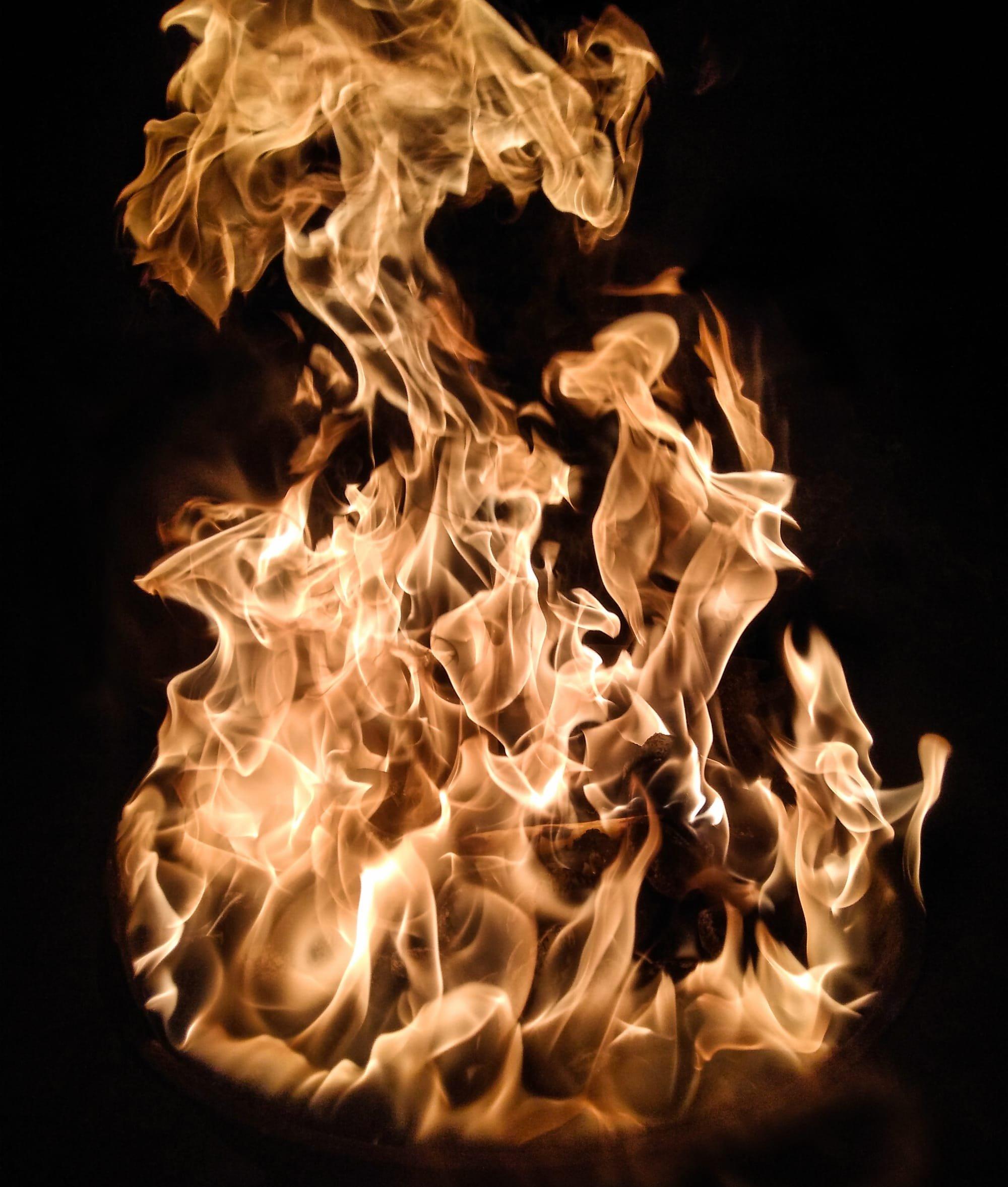 סופי ביסק, אש הגיהנום, שניצל חם, אבו דאבי