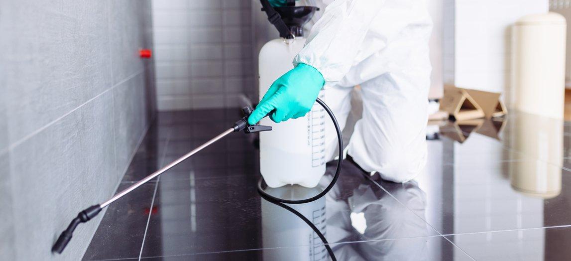 شركة رش مبيدات حشرية في سويحان أبو ظبي