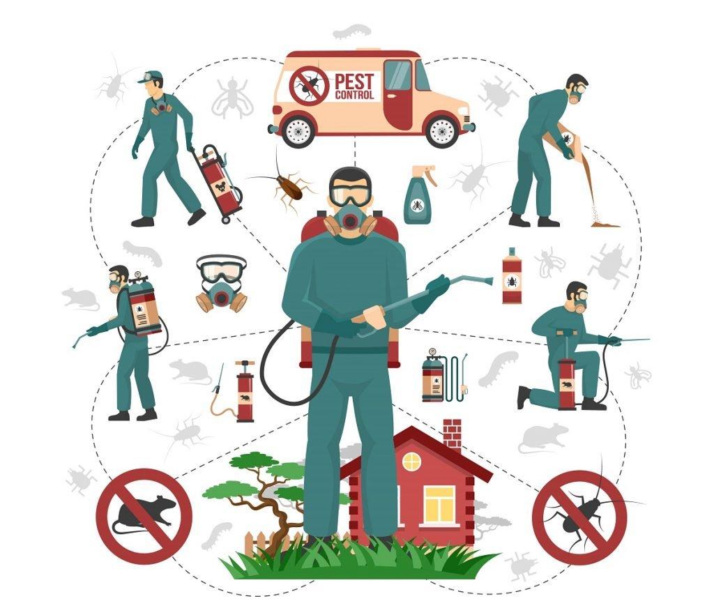 شركة مكافحة حشرات الذباب في المصفح أبو ظبي