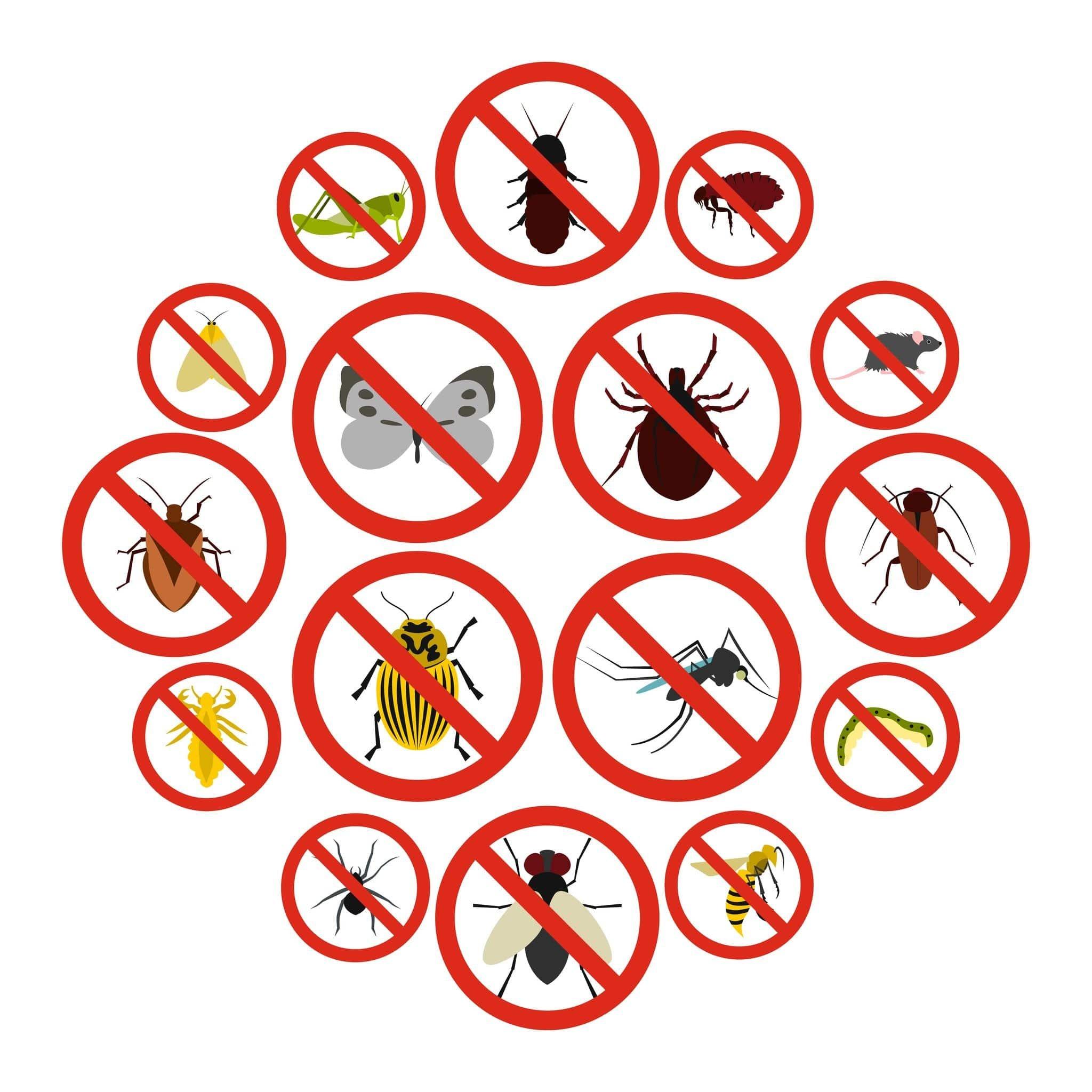 شركة مكافحة حشرات البعوض في الريف أبو ظبي