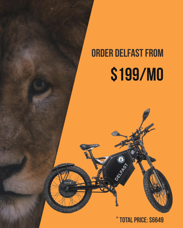 Electric bike Delfast Top 4.8/5.0 - GMC CRUEL FM