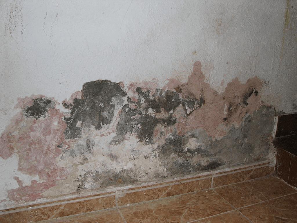رطوبة الحوائط بسبب تسربات المياه