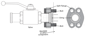 Tri-clamp sanitary Valve Connection