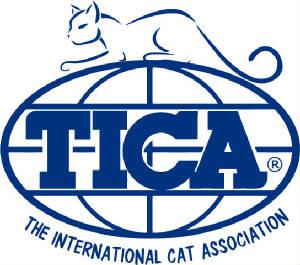 TICALogo-Blue-Globe-Name-Cat-No-Website.jpg