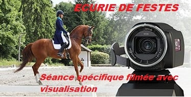 L'image contient peut-être: cheval et plein air, texte qui dit 'ECURIE DE FESTES Seance spécifique filmee avec vec visualisation'
