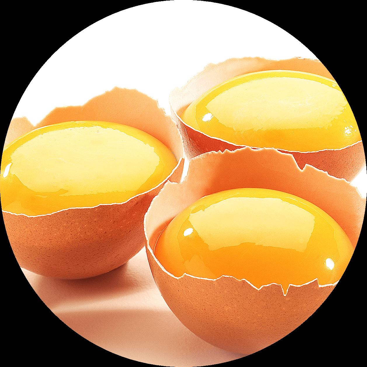 egg yolks for hair loss