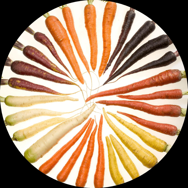 carrot for hair loss