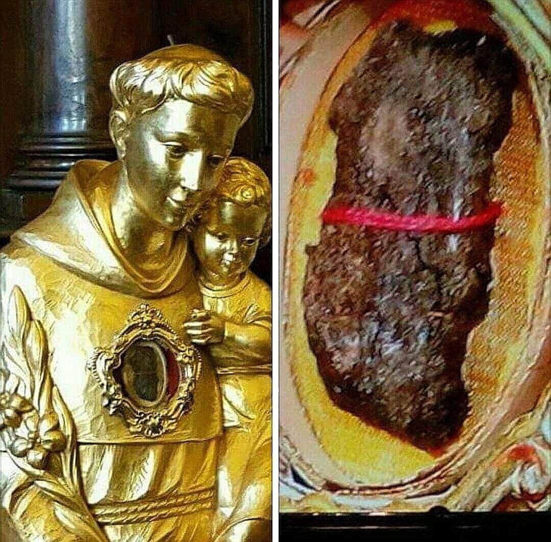 لسان القدّيس مار أنطونيوس البدواني
