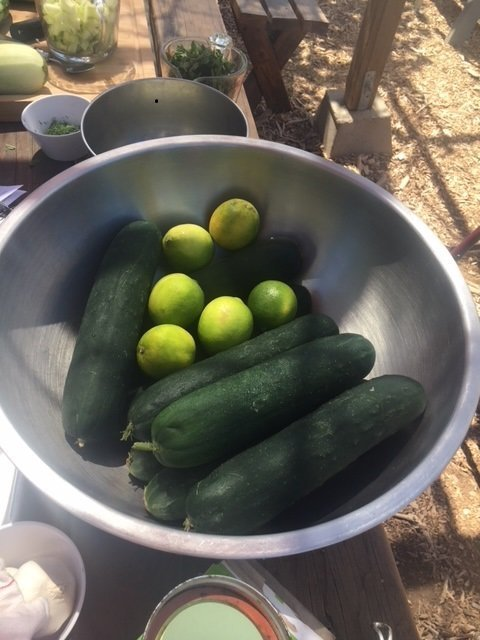 Cukes can be eaten fresh, cooked, or pickled