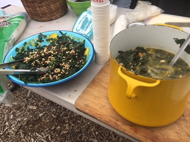 Soup and salad ready for sampling