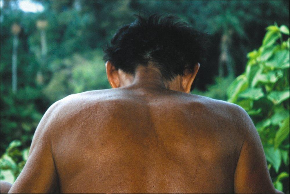 En mann hos matses-folket har inntatt et froskesekret for å få jaguarens krefter