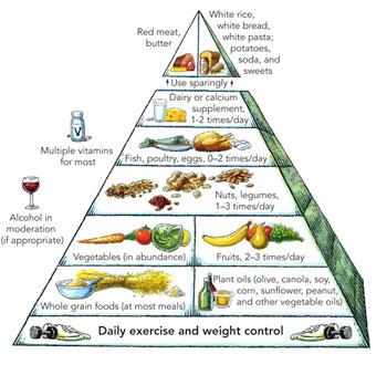 هرم الأكل الصحي