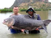 Jurassic Fishing Park - Freshwater Fishing Advice Thailand