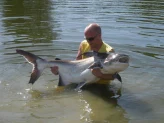 Greenfield Valley Fishing and Cottage Resort - Freshwater Fishing Advice Thailand
