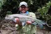 masheer flyfishing