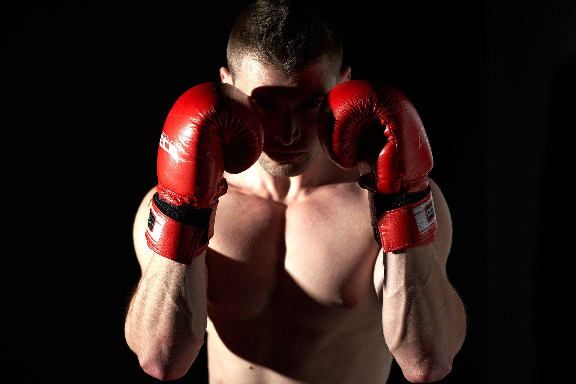 Boxer comme un champion