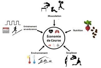 L'économie de course en trail