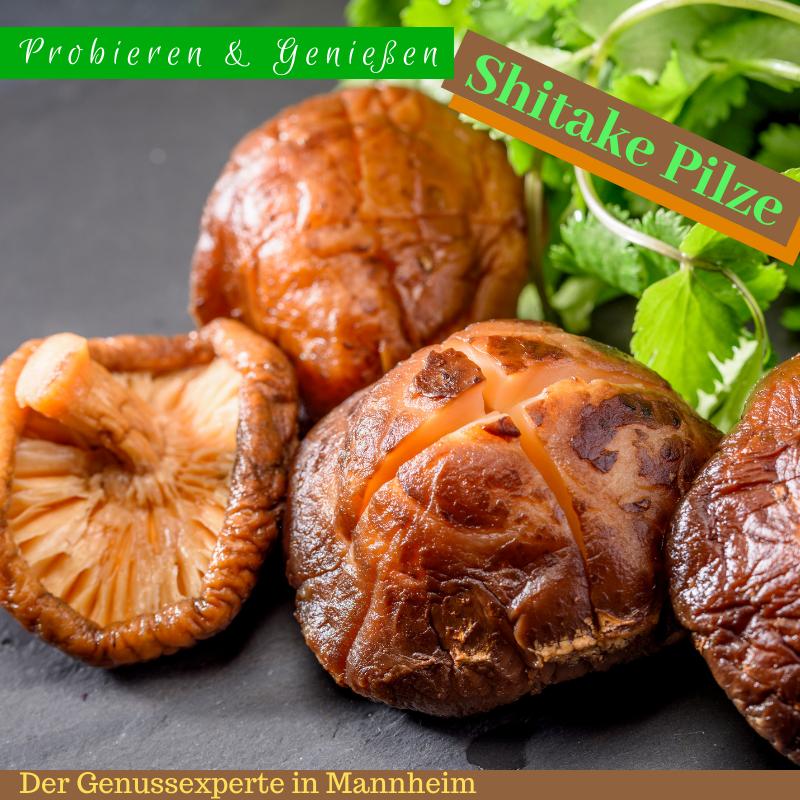 Die weltweit beliebten Shitake Pilze haben ungewöhnliche Eigenschaften, die jeder nutzen sollte!