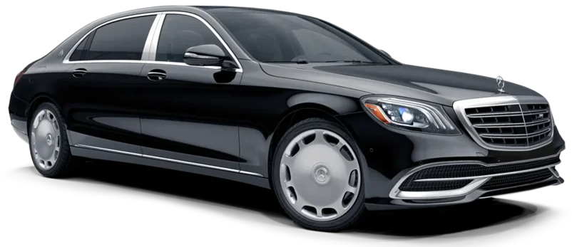 Tsarskoe Selo or Peterhof Transfer with Mercedes-Maybach in St. Petersburg, Russia